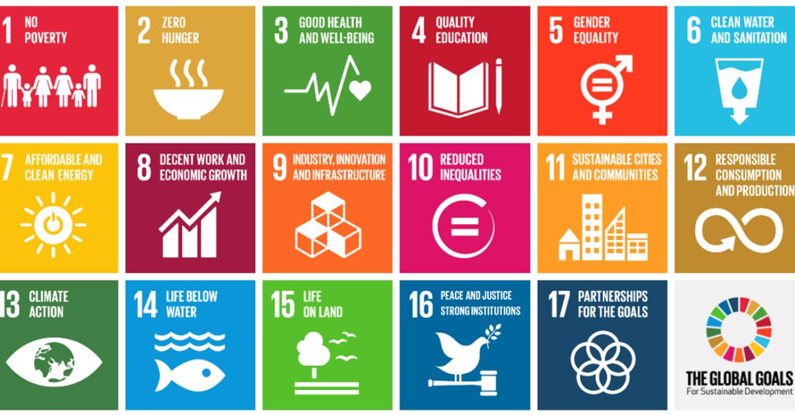 SDGs (Obiettivi di Sviluppo Sostenibile)