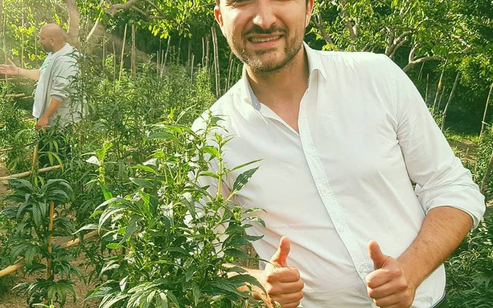"CANNABIS LIGHT … IL ""NUOVO"" BUSINESS !?"